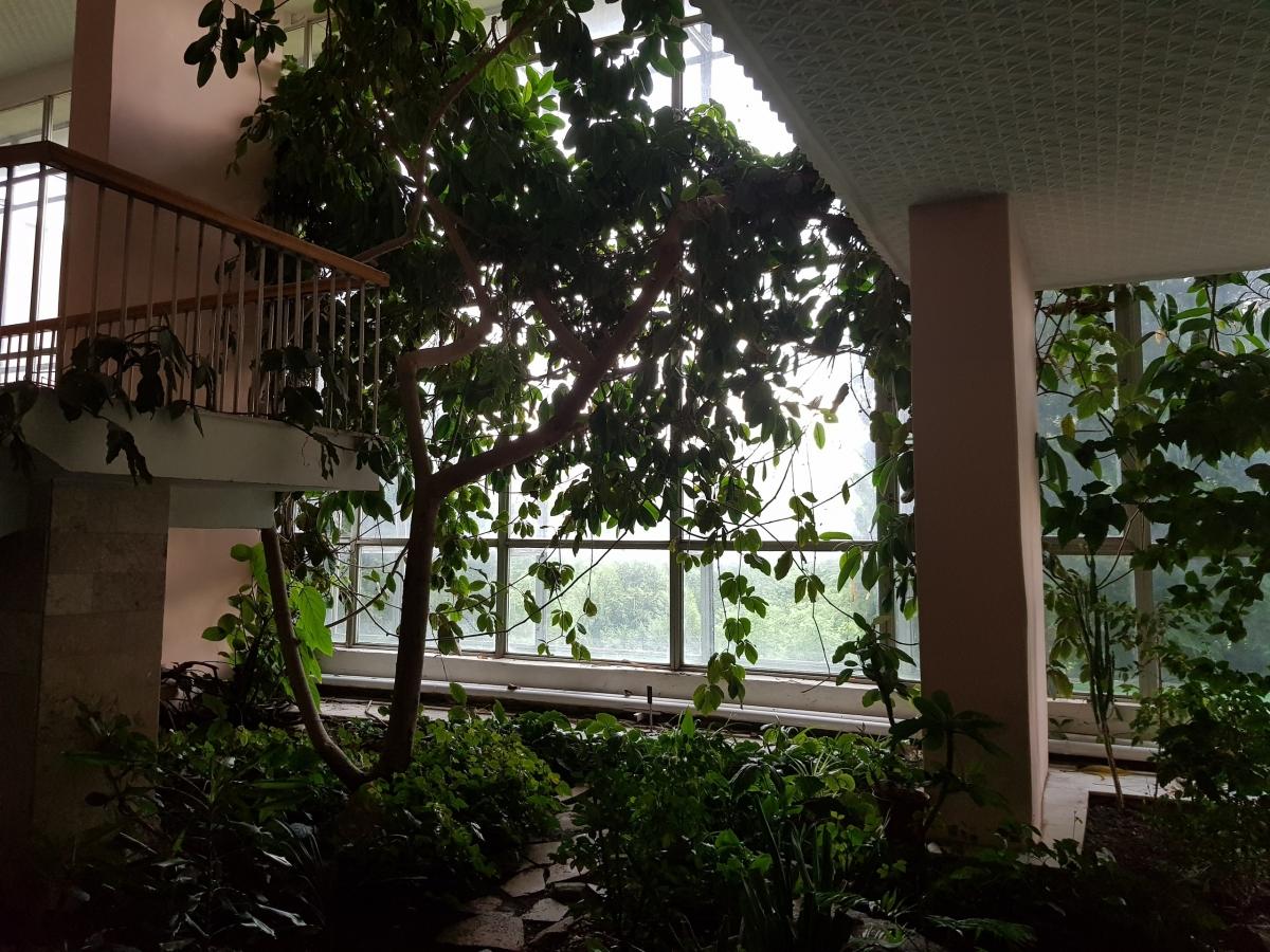 Фрагмент зимнего сада справа от центральной лестницы